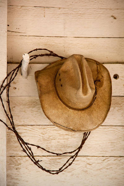 Barb Photograph - Wherever I Lay My Hat by Peter Tellone
