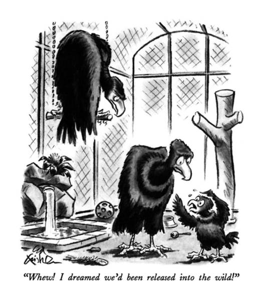 Zoo Animals Drawing - Whew!  I Dreamed We'd Been Released Into The Wild! by Ed Fisher