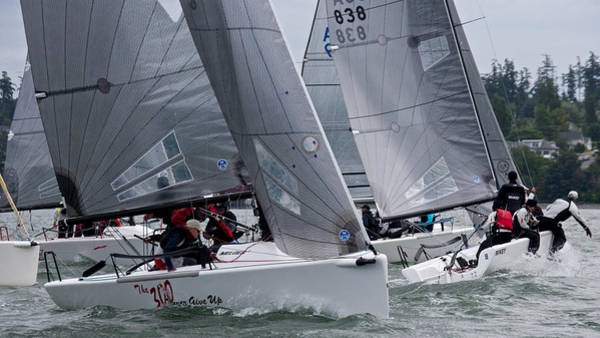 Photograph - Whidbey Race Week by Steven Lapkin