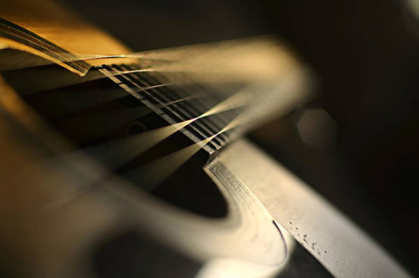 Dof Photograph - While My Guitar Gently Weeps by Laura Fasulo
