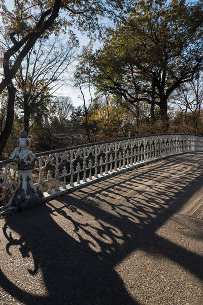 Photograph - Whimsical Shadows - New York City Central Park Bridge by Georgia Mizuleva