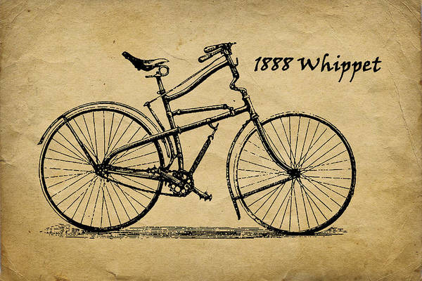 Wall Art - Photograph - Whippet Bicycle by Tom Mc Nemar