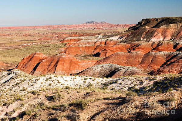 Photograph - Whipple Point Painted Desert Petrified Forest National Park by Fred Stearns