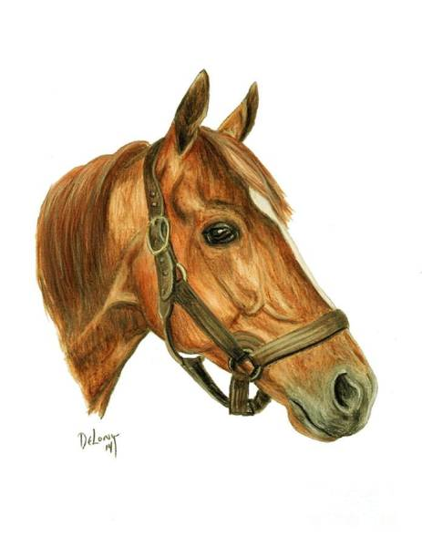 Wall Art - Painting - Whirlaway by Pat DeLong