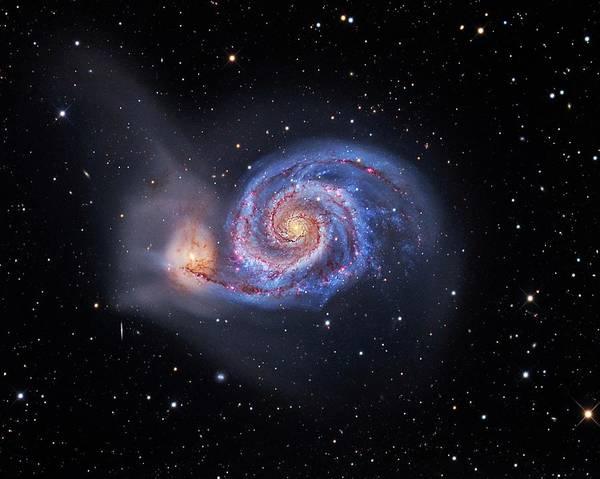Interacting Galaxies Wall Art - Photograph - Whirlpool Galaxy by Tony & Daphne Hallas
