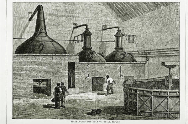 Distillery Photograph - Whisky Distillery by George Bernard/science Photo Library