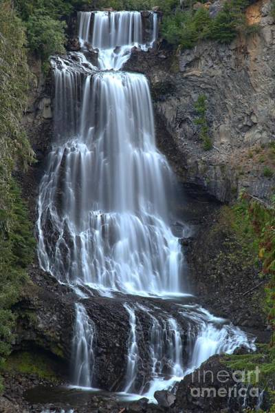 Photograph - Whistler Bc Alexander Falls by Adam Jewell