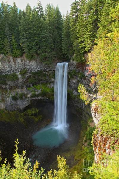 Photograph - Whistler Bc Waterfall by Adam Jewell