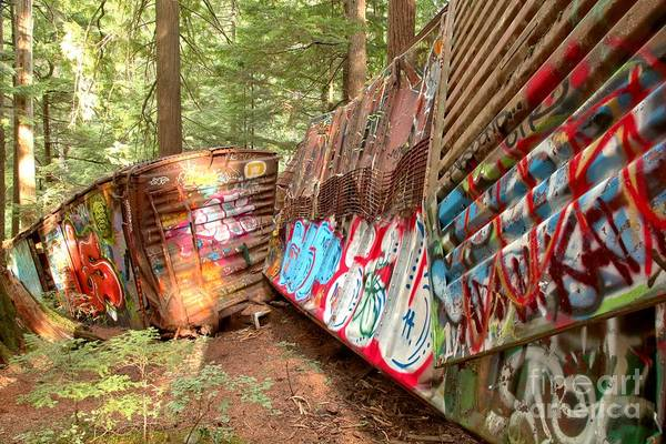 Photograph - Whistler Train Wreck Box Cars by Adam Jewell