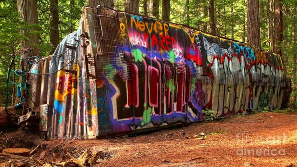 Photograph - Whistler Train Wreck Graffiti by Adam Jewell