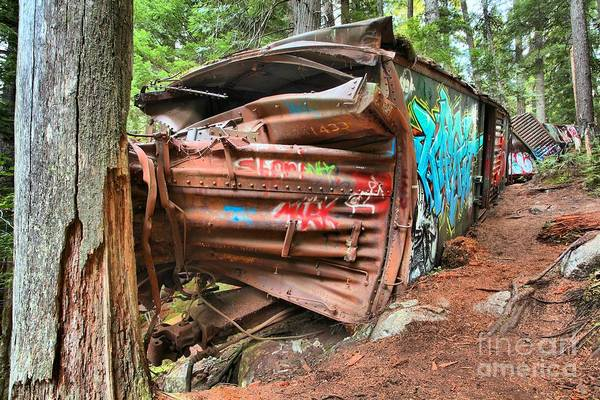 Photograph - Whistler Train Wreck Hits A Tree by Adam Jewell