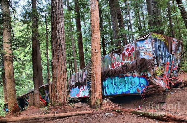 Photograph - Whistler Train Wreckage In The Trees by Adam Jewell
