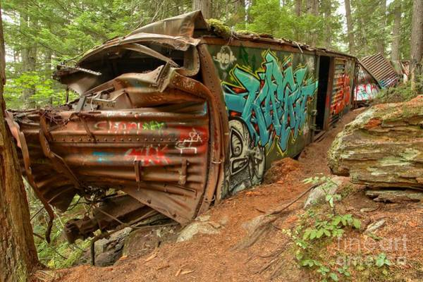 Photograph - Whistler Train Wrecked Into A Tree by Adam Jewell