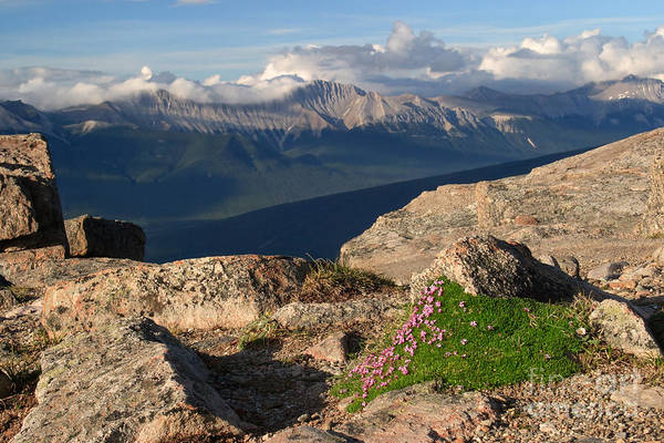 Photograph - Whistlers Peak by Charles Kozierok