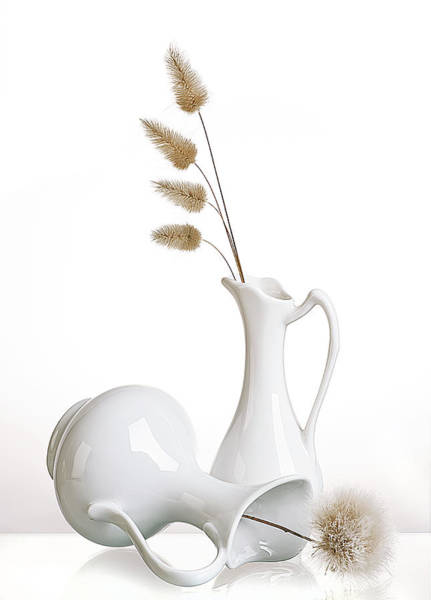 Pitcher Photograph - White by Aida Ianeva