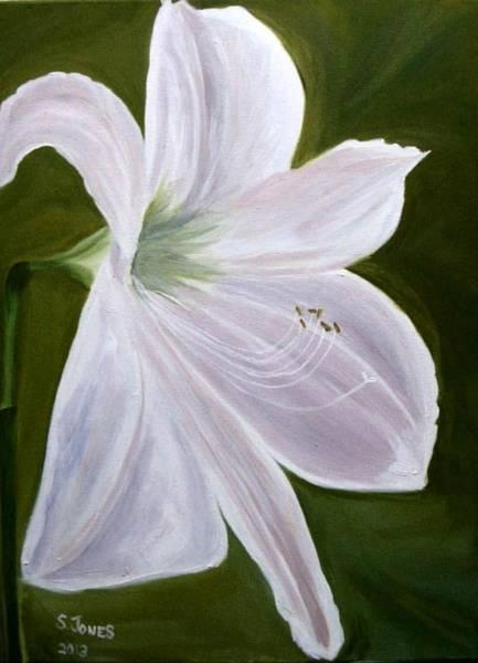 Amaryllis Painting - White Amaryllis by Sally Jones