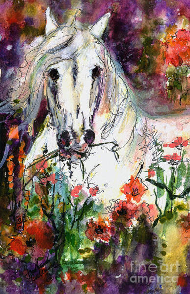 Painting - White Andalusian Stallion In Poppy Field Painting By Ginette by Ginette Callaway
