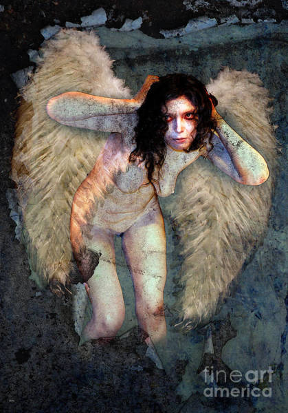 Wall Art - Photograph - White Angel  04 by The Hybryds