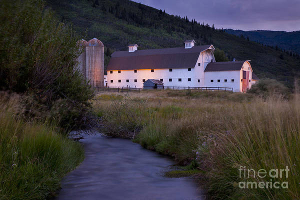 Art Print featuring the photograph White Barn by Brian Jannsen