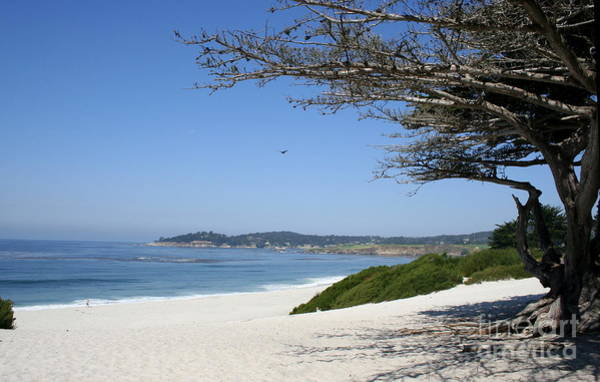 Wall Art - Photograph - White Beach At Carmel by Christiane Schulze Art And Photography