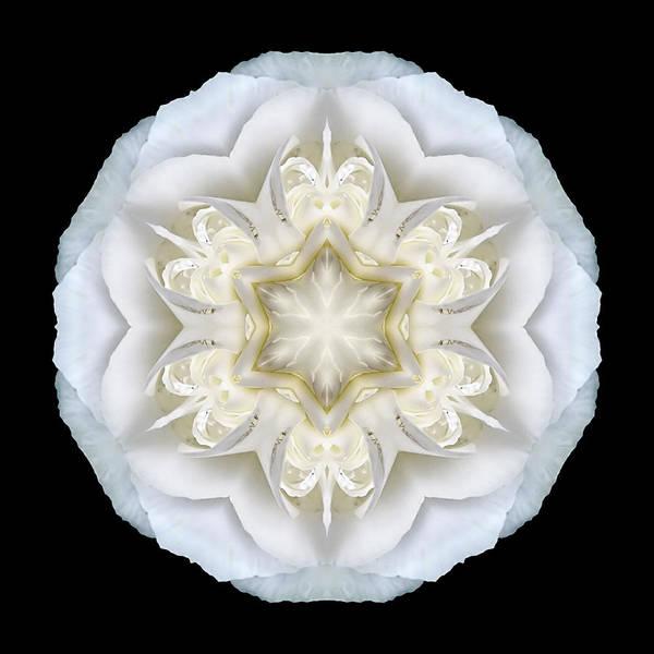Photograph - White Begonia II Flower Mandala by David J Bookbinder