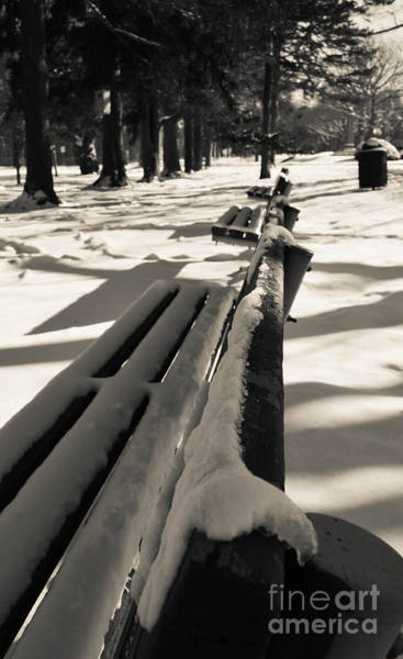 Photograph - White Bench by Andrea Anderegg