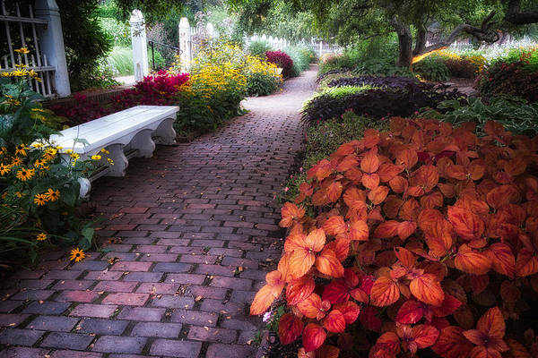 Photograph - White Bench Prescott Park  by Jeff Sinon