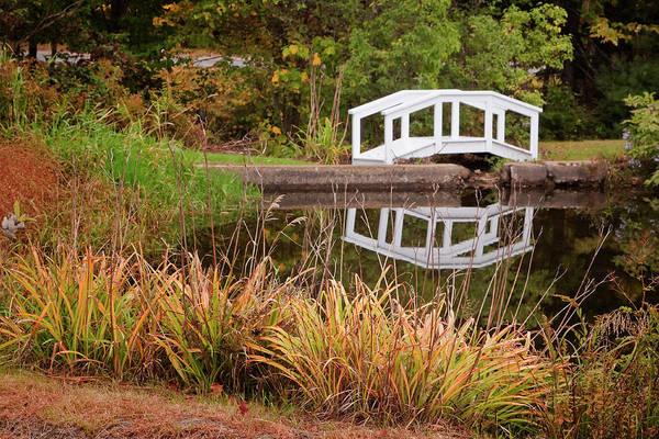 Photograph - White Bridge by Tom Singleton