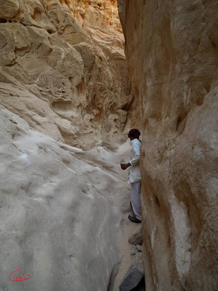 Photograph - White Canyon Walkingway Sinai Egypt by Colette V Hera  Guggenheim