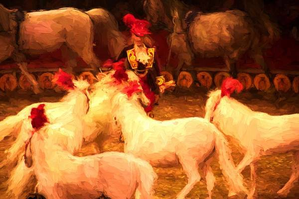 Photograph - White Circus Ponies by Alice Gipson