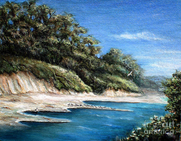 Sand Creek Painting - White Cliffs by Danuta Bennett