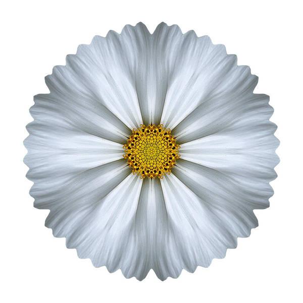 Photograph - White Cosmos I Flower Mandala White by David J Bookbinder