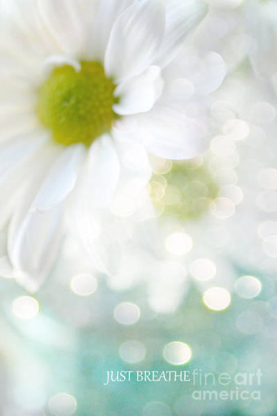 Wall Art - Photograph - Dreamy White Daisies Floral Art - Ethereal Dreamy Shabby Chic White Daisies - Just Breathe by Kathy Fornal