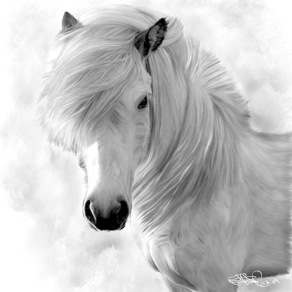 Icelandic Digital Art - White by Donald Pavlica