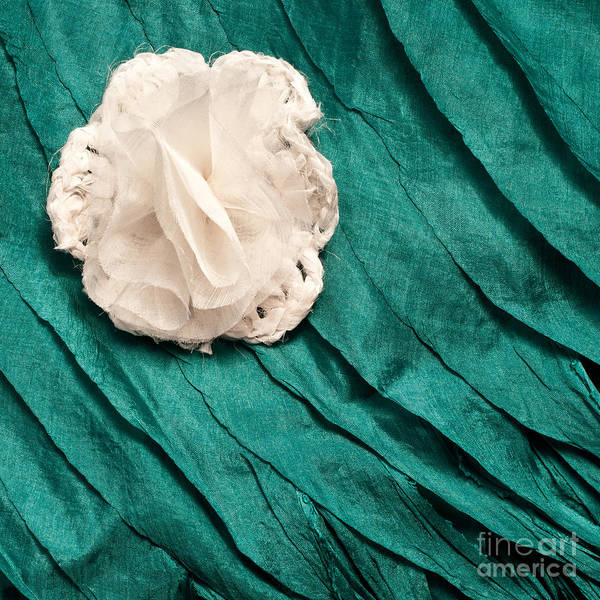 Turqoise Photograph - White Flower Blue Silk 02 by Rick Piper Photography