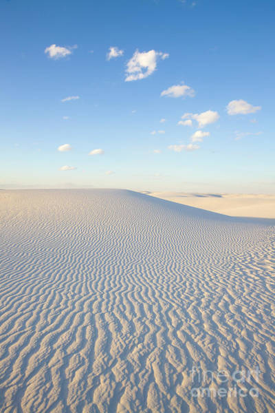 Photograph - White Gypsum Dune  by Yva Momatiuk John Eastcott