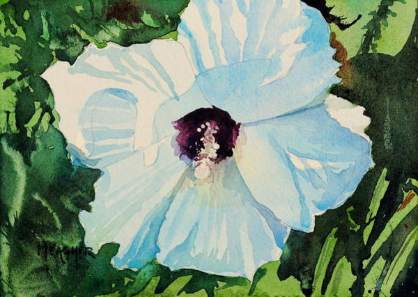 Hibiscus Flower Painting - White Hibiscus by Spencer Meagher
