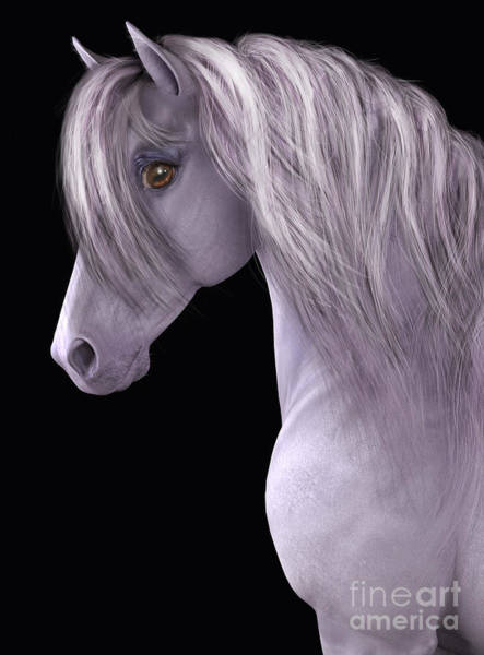 Digital Art - White Horse Black Background by Elle Arden Walby