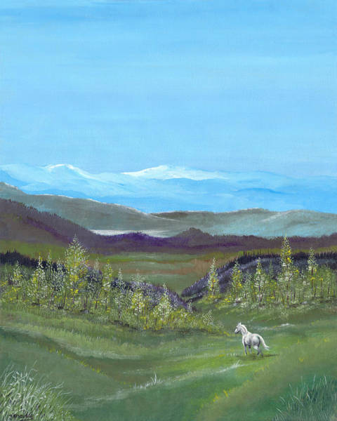 Painting - White Horse by Carl Genovese