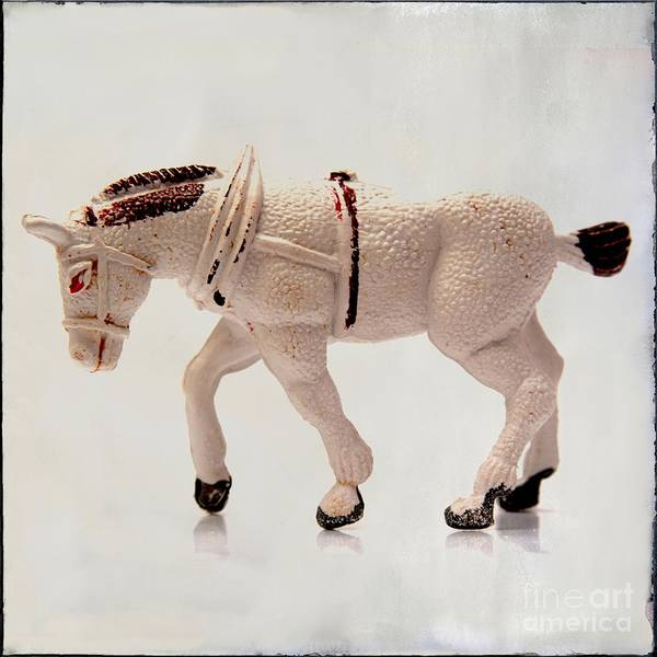 Wall Art - Photograph - White Horse Figurine by Bernard Jaubert