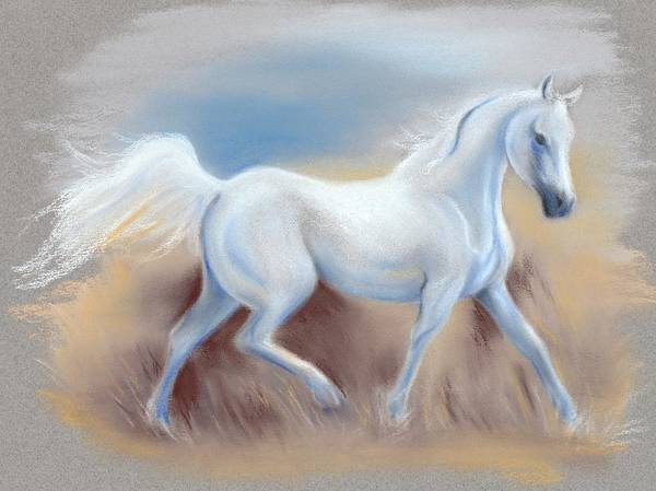 Pastel - White Horse by MM Anderson