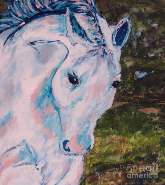 Painting - White Horse by Shelley Jones
