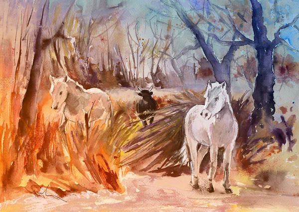 Painting - White Horses And Bull In The Camargue by Miki De Goodaboom