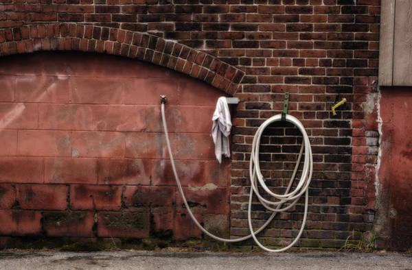 Photograph - White Hose by Tom Singleton