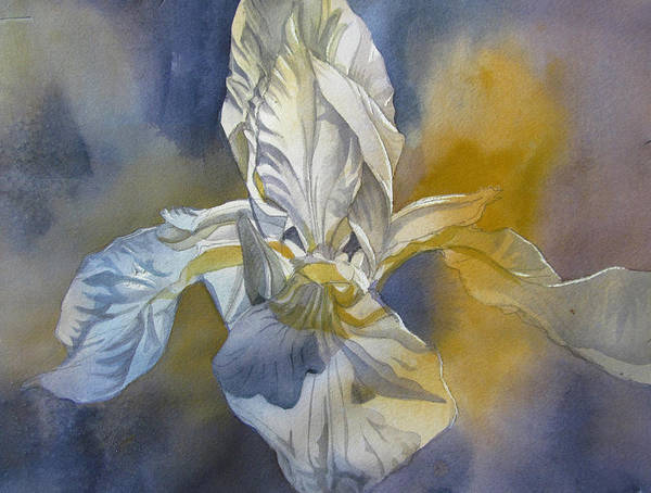 Painting - White Iris With Blue by Alfred Ng