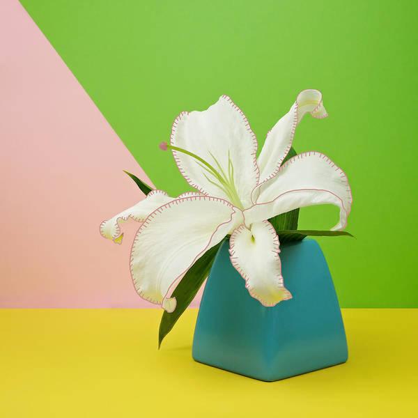 Wall Art - Photograph - White Lily Flower In Blue Vase by Juj Winn