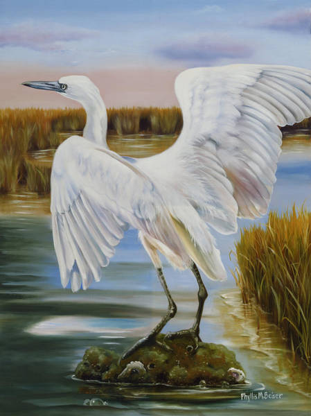Wall Art - Painting - White Morph Reddish Egret At Creole Gap by Phyllis Beiser
