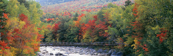 Pemigewasset River Wall Art - Photograph - White Mountain National Forest Nh by Panoramic Images