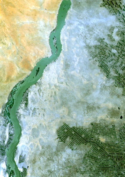 Satellite Photograph - White Nile Sudan by Anonymous