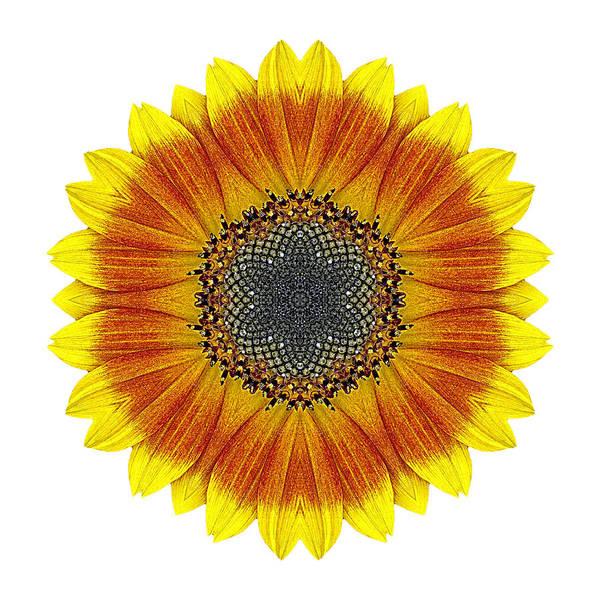 Photograph - Orange And Yellow Sunflower I Flower Mandala White by David J Bookbinder